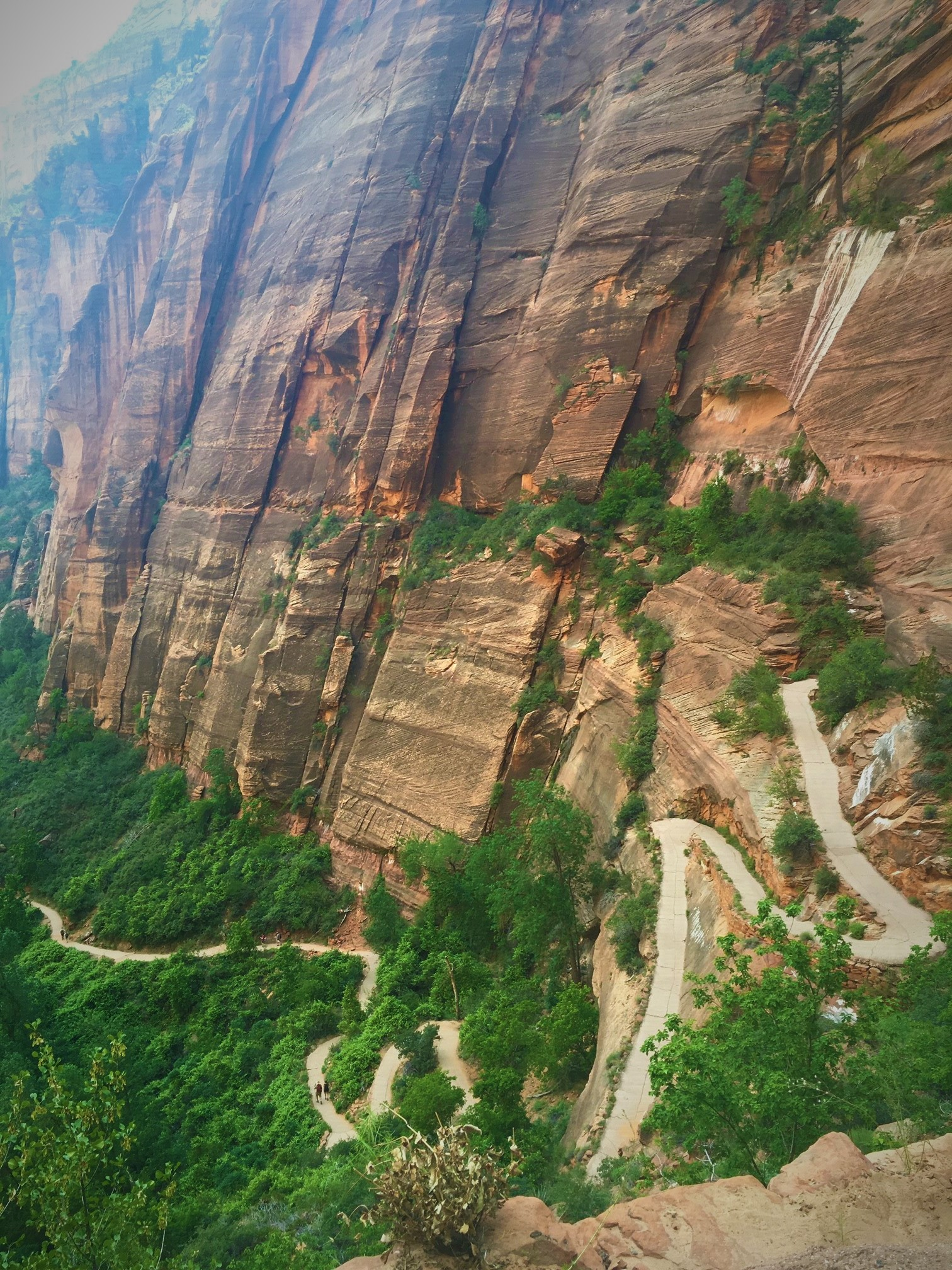 Zion National Park switchbacks of Angel's Landing - Utah's Best Vacation Rentals