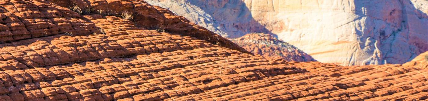 Snow Canyon State Park - Utah's Best Vacation Rentals